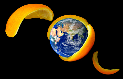 globe in orange peel